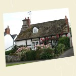 Rose covered cottage, Eardisley Angle - Ref L11c