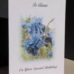 Aquilegia - Birthday Card Angle - Ref P174