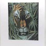 Tiger Artwork Card - Ref 202