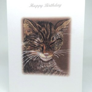 Sleeping Cat Artwork Card - Ref A206