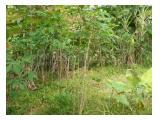 Jual  Tanah di Reni Jaya Pamulang Tangerang Selatan - Luas 1075 m2, SHM