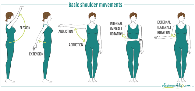 Shouldermotions