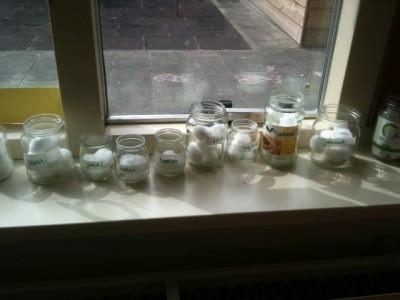 Bonen planten in de klas