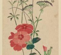 Estampe de Hiroshige