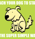teach-your-dog-to-stay