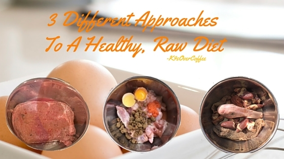 K9sOverCoffee   3 Different Approaches To A Healthy, Raw Diet