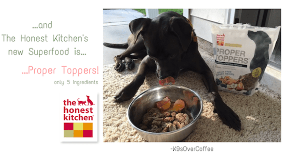 K9sOverCoffee | ...and The Honest Kitchen's new Superfood is...Proper Toppers!