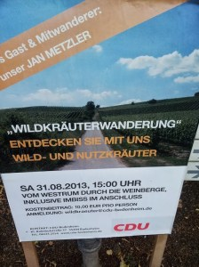 flowers 224x300 Herbal Remedy: The CDU Take Their Voters Where The Wild Flowers Are