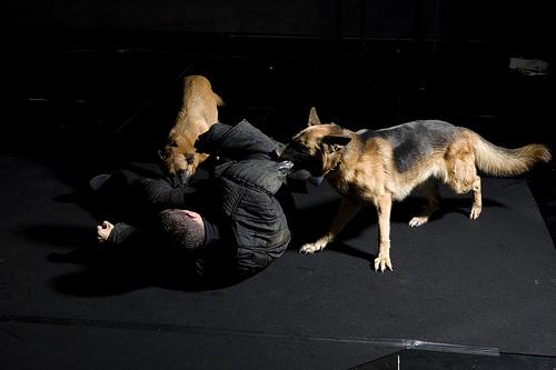 Romeo Castellucci fotocredits Luca Del Pia