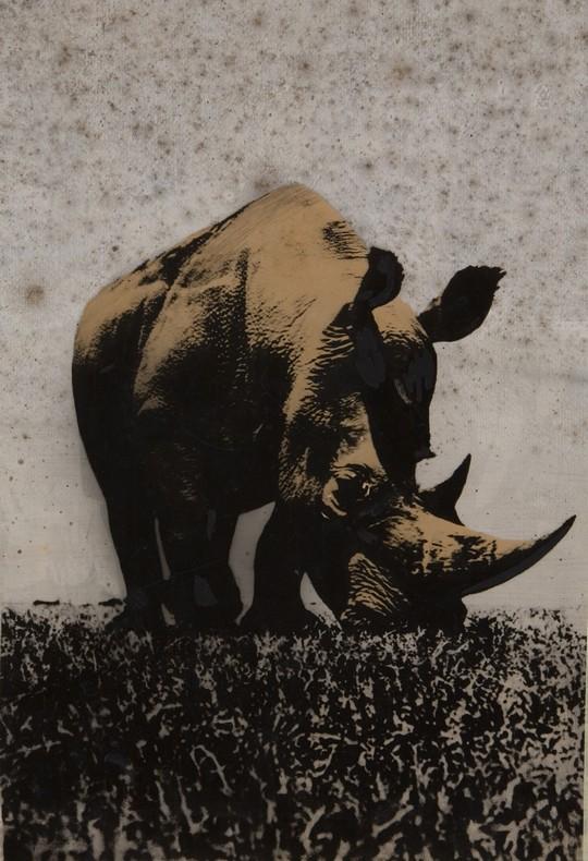 Pino-Pascali_Rinoceronte, 1964