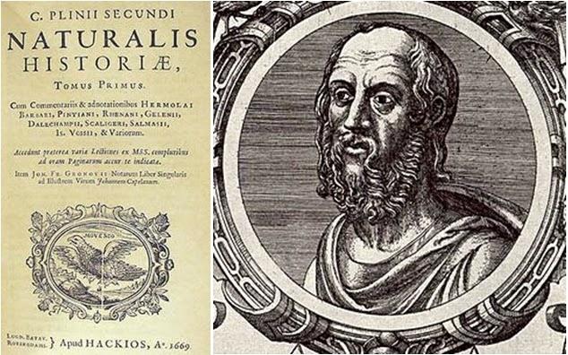 plinio_il_vecchio_naturalis_historiae