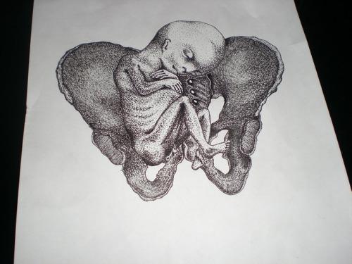 andrey svetov feto ed ossa