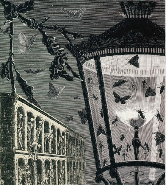And the Moths Began to Sing by Max Ernst.
