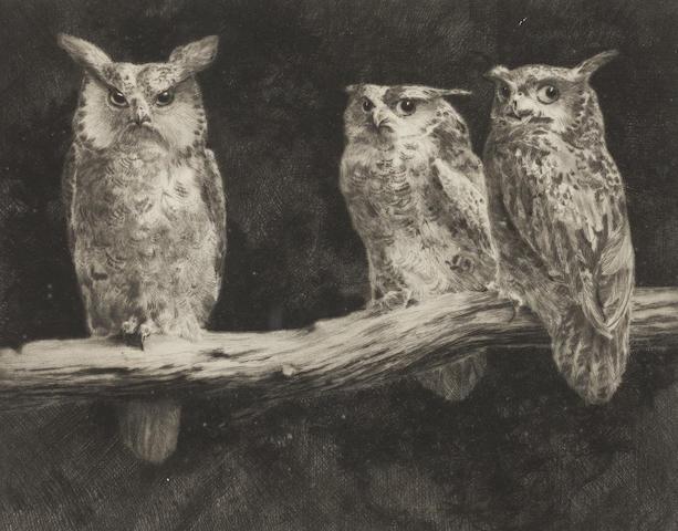 Leonard Robert Brightwell, Owls, collezione privata
