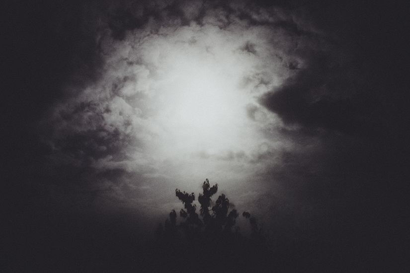 Laura Makabresku,God is near (from my private diary)