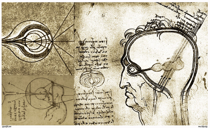 Various Sketches of the function and structure of the Eye from Leonardo da Vinci's notebooks.