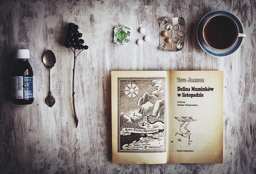 Laura Makabresku  przygotowywanie słoików z fragmentami lasu, magiczny syrop z czarnego bzu i dolina muminków w listopadzie