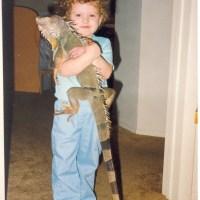 Iguanas as Pets