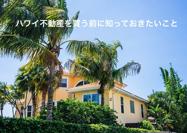 Palm_Tree_House