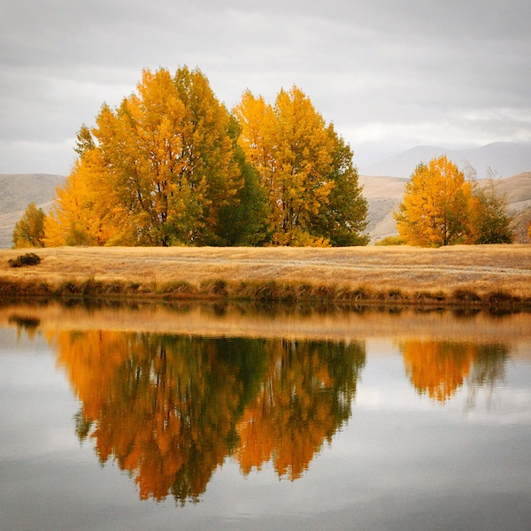 Autumn reflections on Lake Hayes, between Queenstown and Arrowtown on the South Island, New Zealand