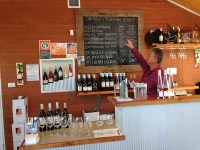 Terry from Orange Mountain Wines, Orange Wine Tours