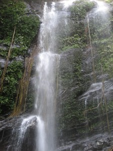 Hidlumane Falls, Shimoga – A Majestic Beauty in Seclusion