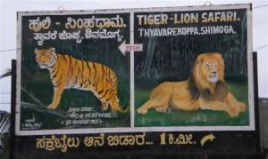 Tyavarekoppa Lion and Tiger Reserve, Shimoga
