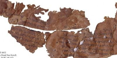 leviticus-dead-sea-scroll-ms-4611_f-E