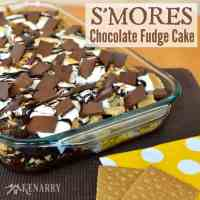 Chocolate Fudge Cake: Marshmallow S'mores Dessert