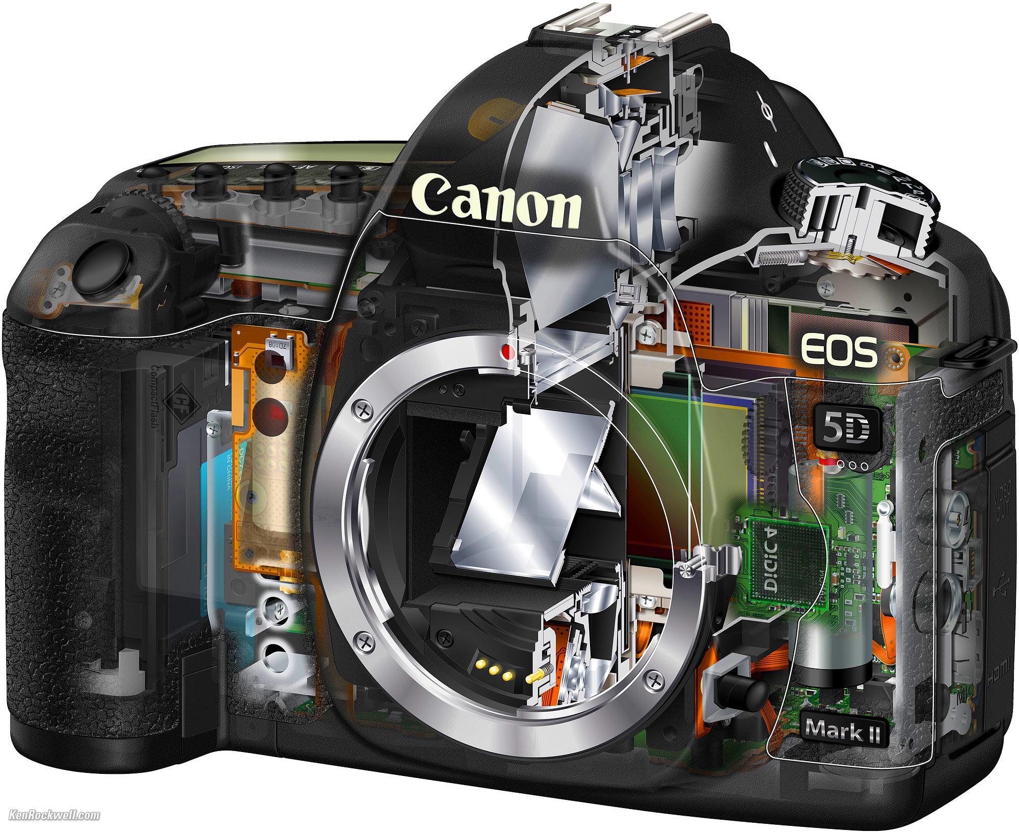 Decent Open Canon 5d Mark Vs Nikon D850 Canon 5d Mark Video Hello Canon Eos Mark No Built Flash dpreview Canon 5d Mark V