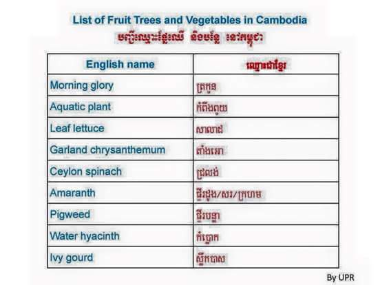 fruits and vegetables in Kampuchea 2559