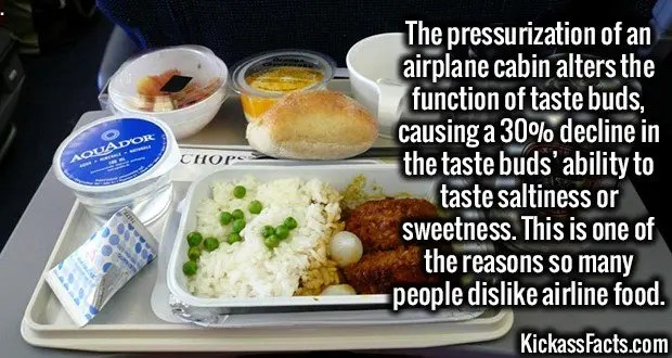 1830 Airplane Food