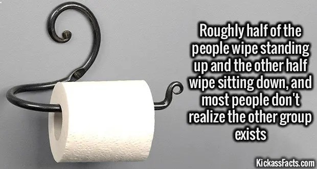 1858 Toilet Paper Wiping