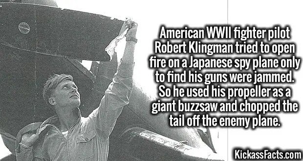 4002 Robert Klingman-American WWII fighter pilot Robert Klingman tried to open fire on a Japanese spy plane only to find his guns were jammed. So he used his propeller as a giant buzzsaw and chopped the tail off the enemy plane.
