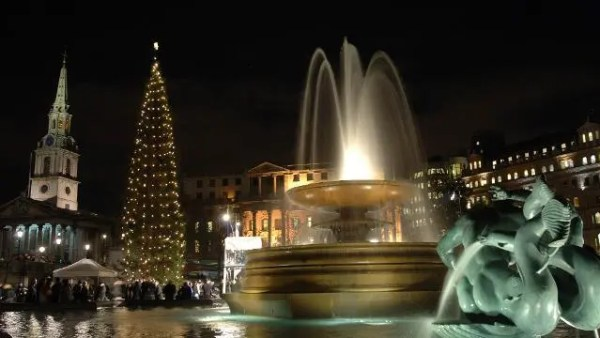 christmas-tree-at-trafalgar-square