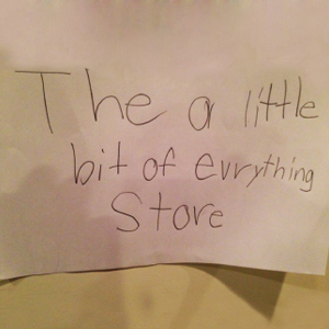 the-little-bit-of-evrything-store