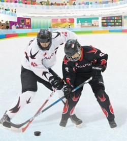 hockeytrail