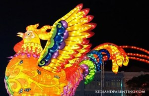 lights-chinatown-rooster