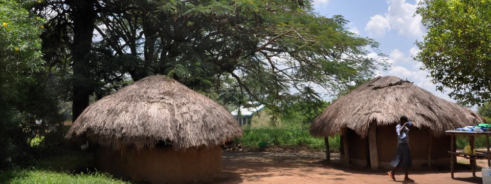 Village houses in the village of Lwala, Uganda.