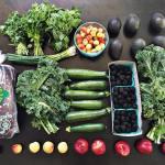 6516 parsley cilantro mint rainer cherries avocados green onions squawhellip