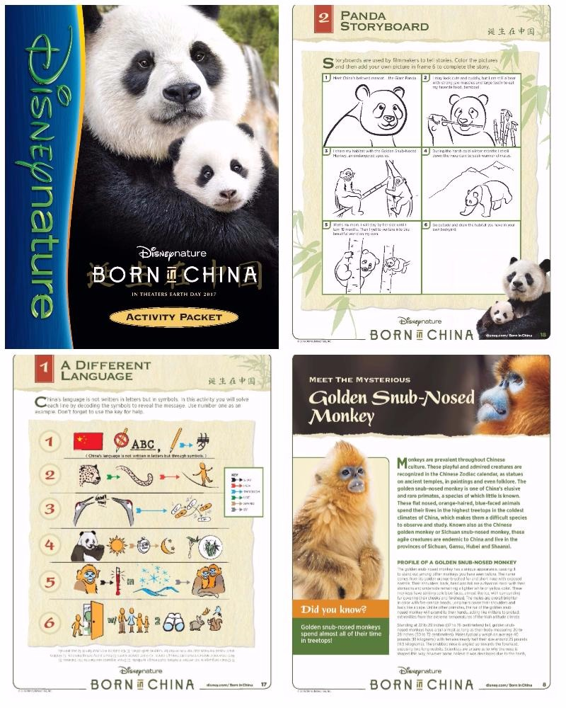 Born in China Activity Pack