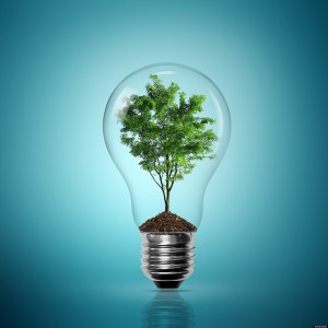 Website Lightbulb with tree growing by MattWalker
