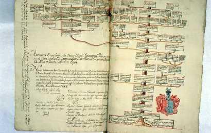 jak wygląda drzewo genealogiczne rodziny