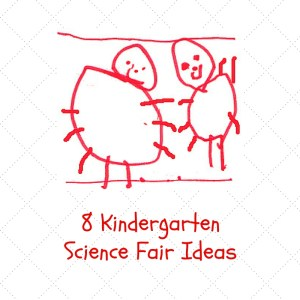 Science Fair Ideas