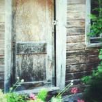 Olgas door