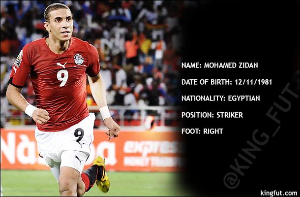 Mohamed Zidan Profile