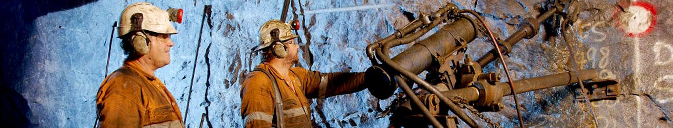 Challenger Gold Mine