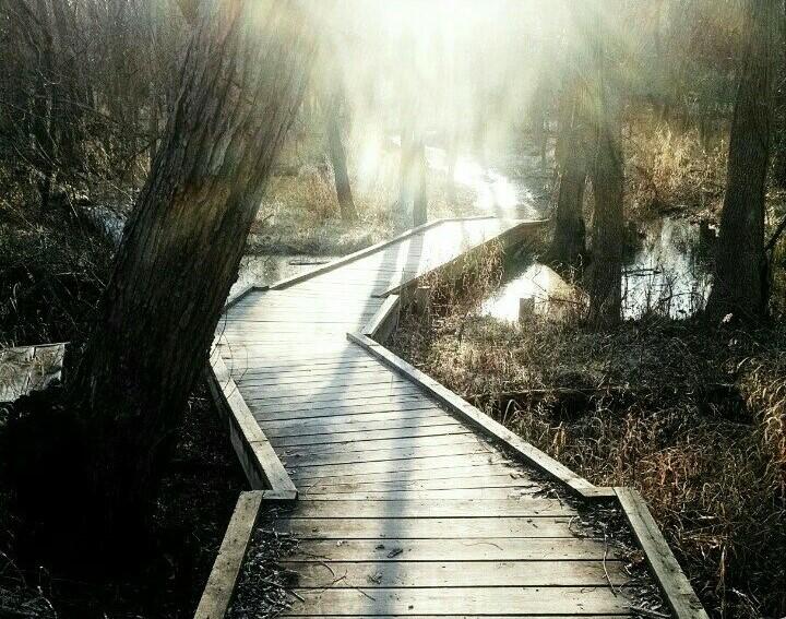 Serenity Road Bridge