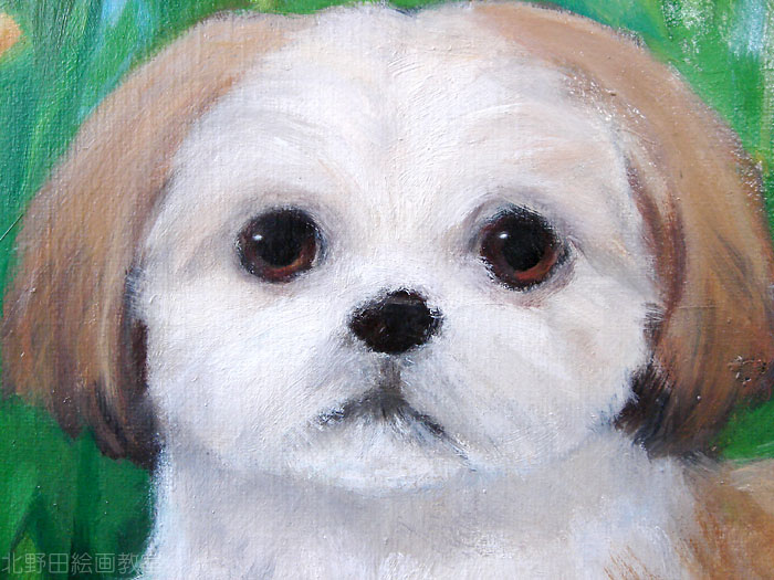 北野田絵画教室 犬の肖像画ご依頼(ガジュマル)アップ