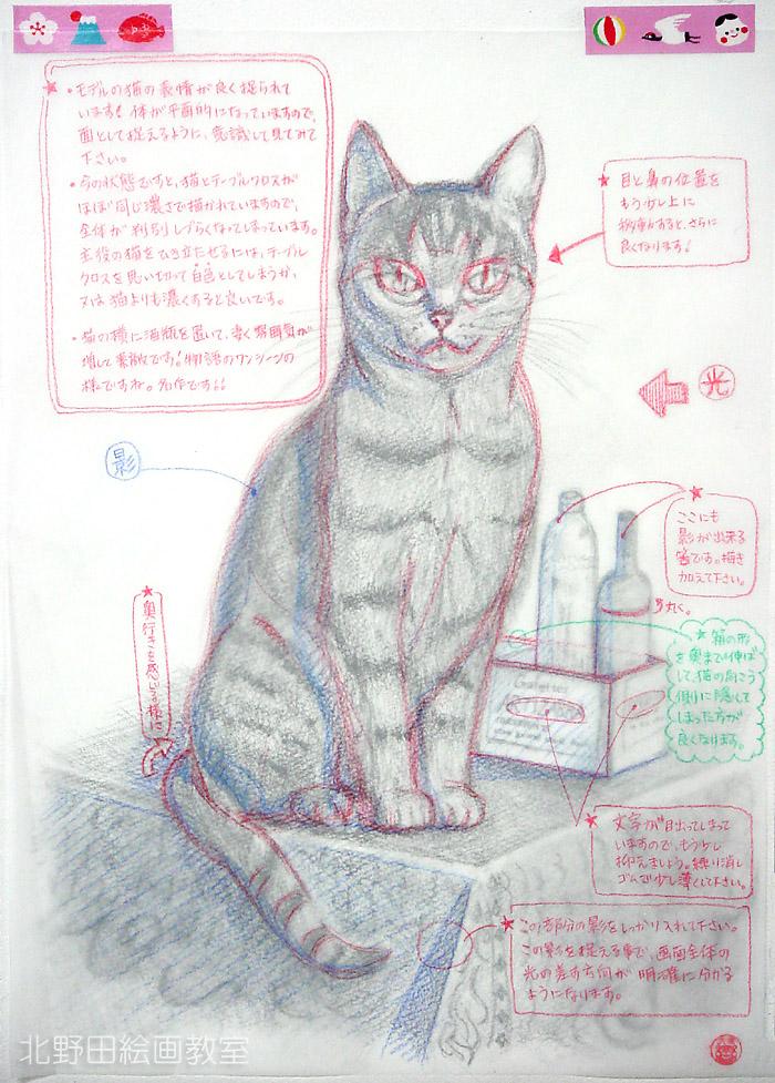 北野田絵画教室の通信レッスン・Iさん・猫